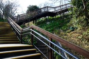 Wooden Steps over Old Steps, de ykanazawa1999, en Flickr