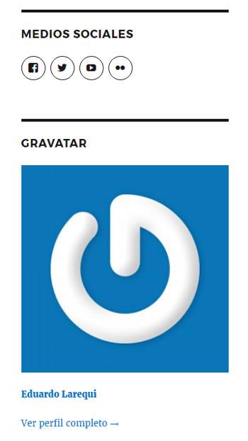 Figura 3 - Widgets de iconos sociales y gravatar