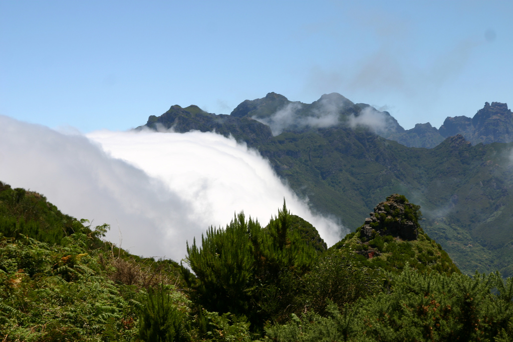 Nieblas en Madeira